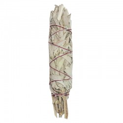 White Sage (7 Inches)